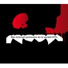 Cellule de reception laser GEOFENNEL FR-Dist30 pour niveau laser rotatif faisceau rouge et faisceau vert