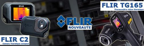 Camera thermique FLIR C2 et Thermomètre TG165